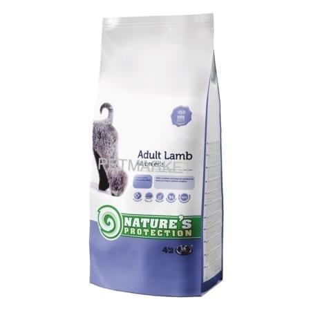 10adult lamb 4kg