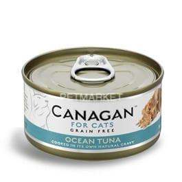 wet-cat-oceantuna