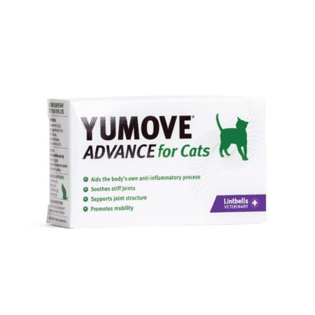 products-yumove-cat