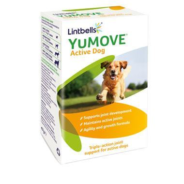 3620-yumove-active-60