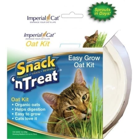 imperial_cat_snack_n_treat_easy_grow_oat_kit